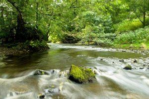 river-71639_640